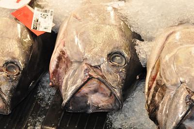 Fish Auction