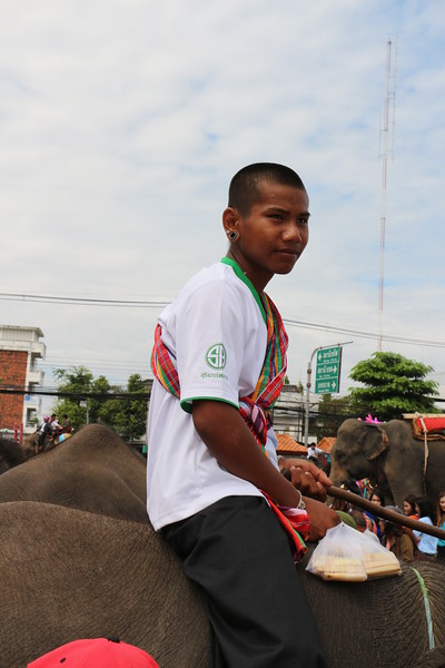 2014-11-14 Surin Elephant Welcome Feast 850.JPG