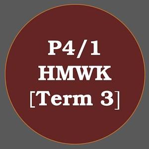 P4/1 HMWK T3