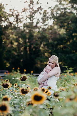 Sunflowers-ColsonFam