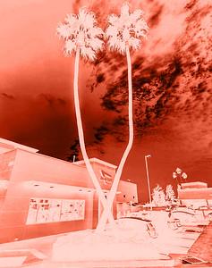 Digital Negatives and Prints: Darkroom