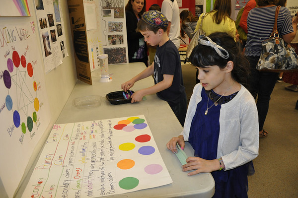 2nd Grade Science Fair