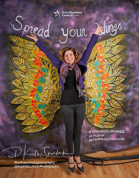DS904988 MAMP2019-Wings.jpg