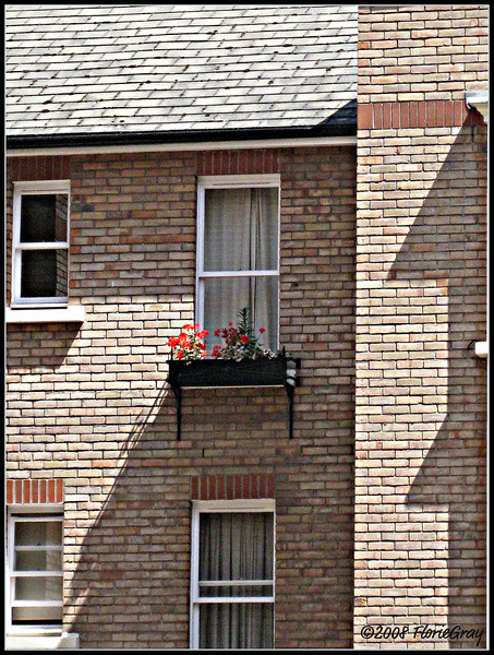 The Windowbox of Good and Evil; Banbury, England    Copyright ©2009 Florence T. Gray. This image is protected under International Copyright laws and may not be downloaded, reproduced, copied, transmitted or manipulated without written permission.