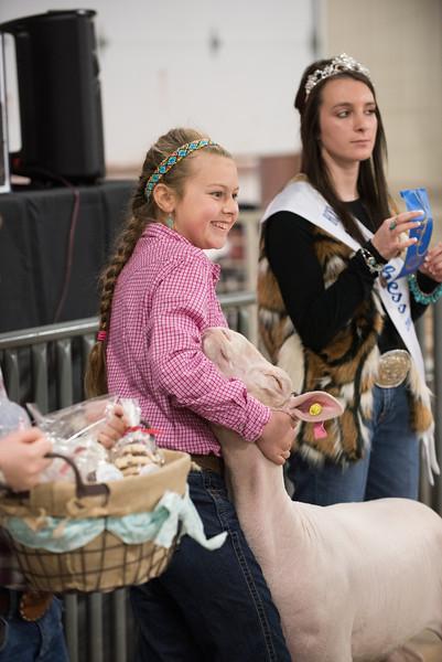 Hays County Show-0464.jpg