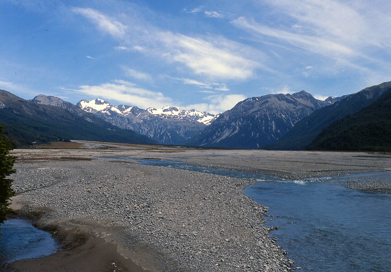 NZ_051.jpg