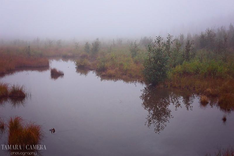 Eagle River4-5-2.jpg