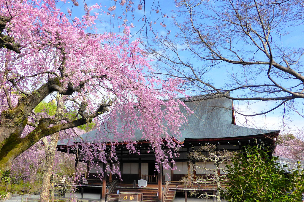 Tenryu-ji, Tahoden (Hall of Many Treasures) -1 (April 2016)