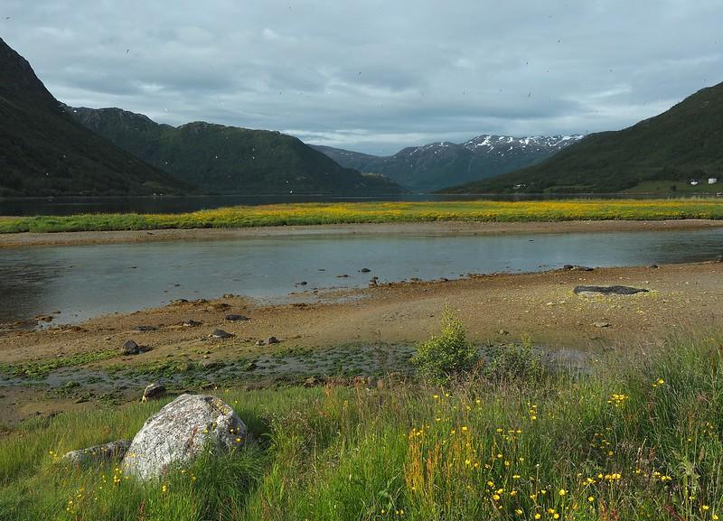 Gullesfjordbotn 08-07-17 (1).jpg
