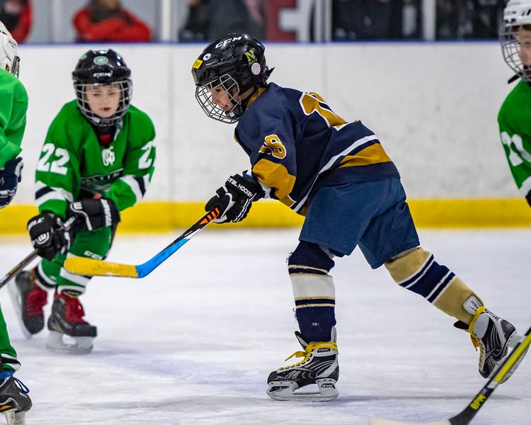 2019-02-03-Ryan-Naughton-Hockey-40.jpg