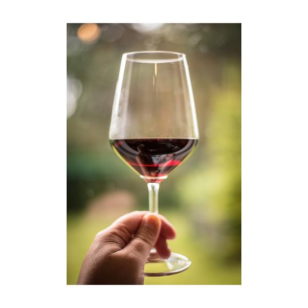 162_Wine_10x10.jpg