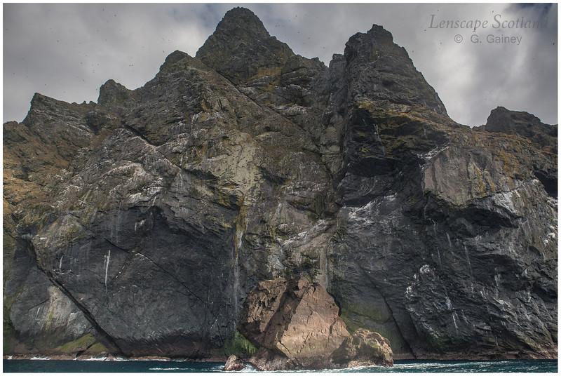 Boreray western cliffs (3)