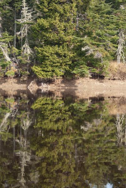 Maine Vacation-03089.jpg
