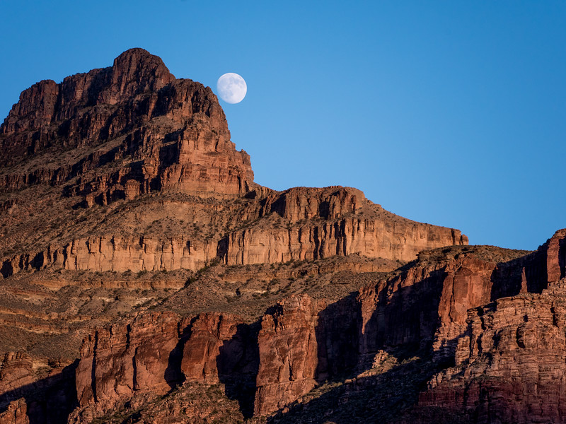 Grand Canyon-263.jpg
