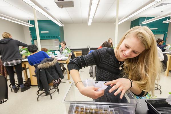 Biology - Alyssa Hakes