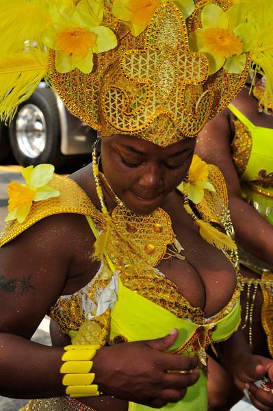 DC Carnival 2010 (132).jpg