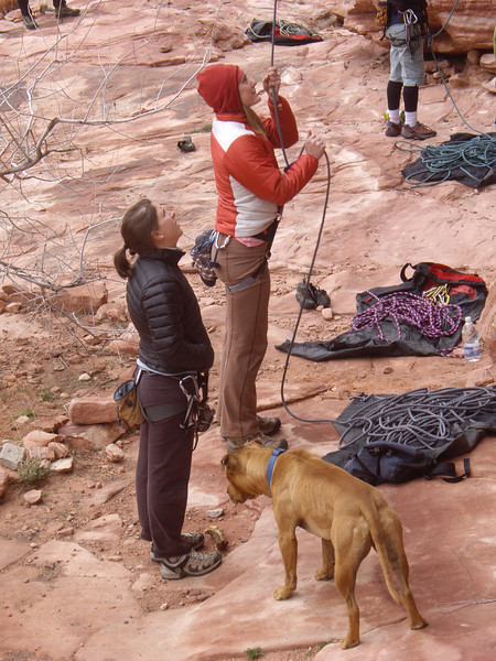 Jenny belaying, Laura watching, big dog wanting Laura to throw stick. edit