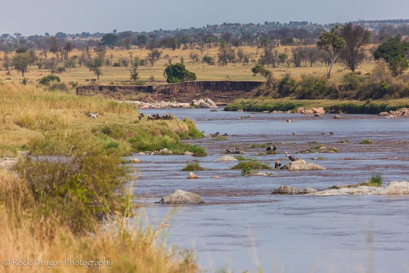 South_Serengeti-70.jpg