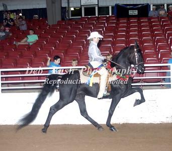 CLASS 65  PLEASURE HORSE GRAND CHAMPIONSHIP