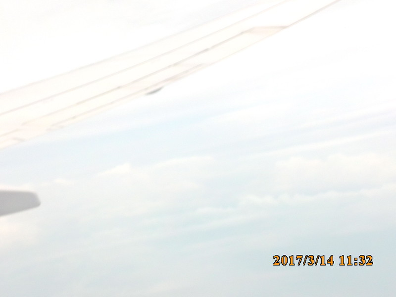 SUNP0782 (2).JPG