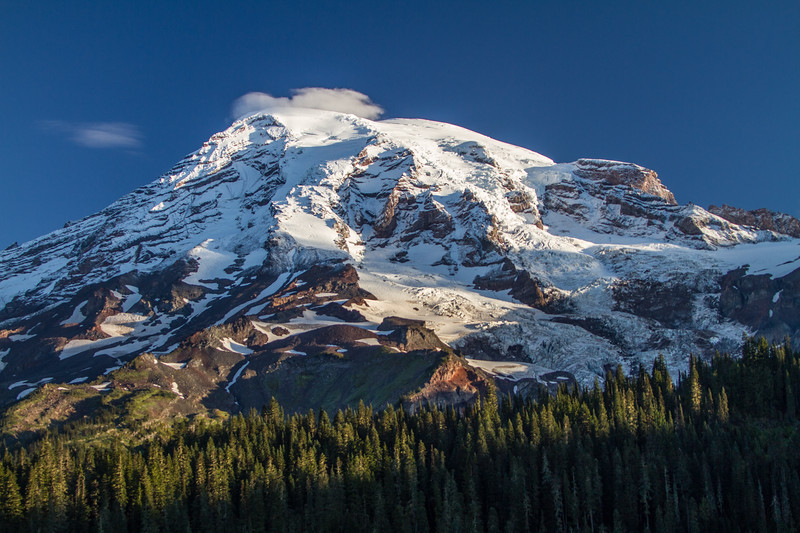 Mount Rainier At Sunrise With Forest In Foreground, Rainier National Park, Washington, USA, North America