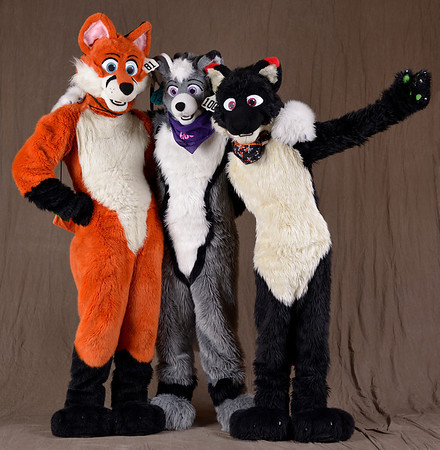 Great Lakes Fur Con 2014