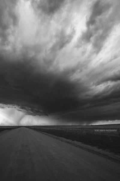 Storm_W0C5191WEB.jpg