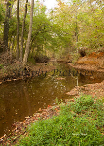 Banita Creek102