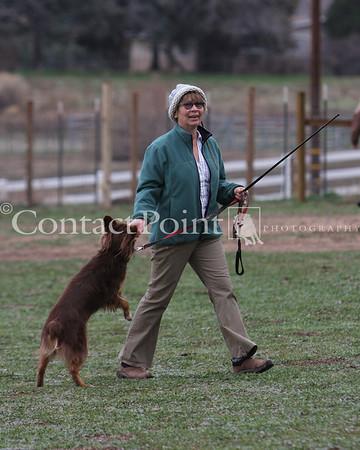 BCCGLA Herding Jan09