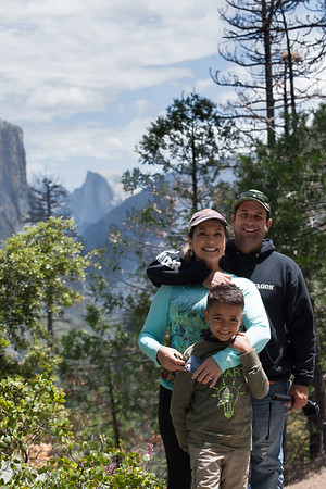 The Riley Family Vacation, Yosemite National Park and Surrounding