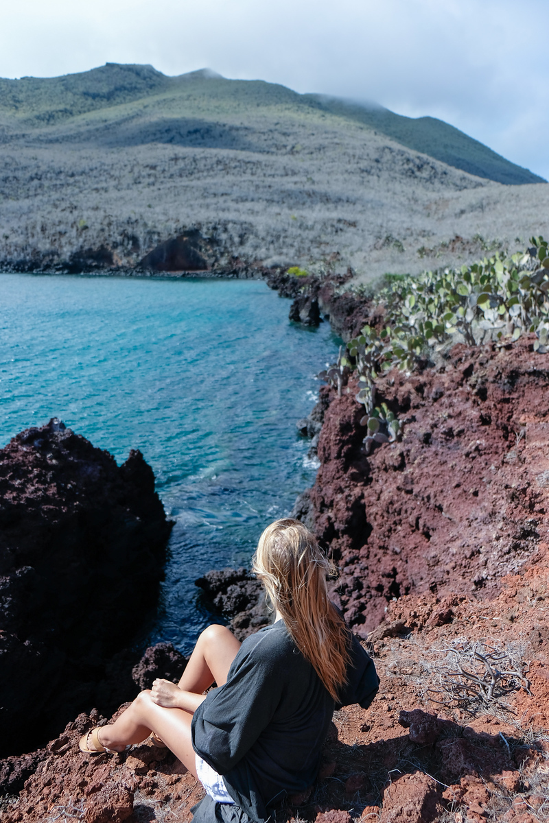 Rábida Island coastline