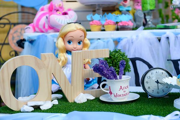 1st Birthday Occasion Featuring Alice in Wonderland Theme!