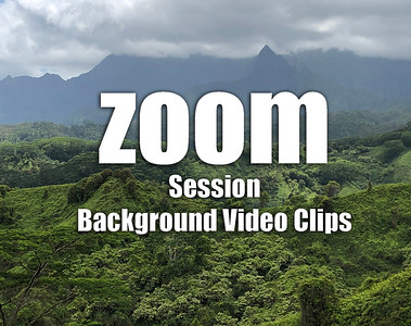 HD Short Video Clips for ZOOM Session Backgrounds