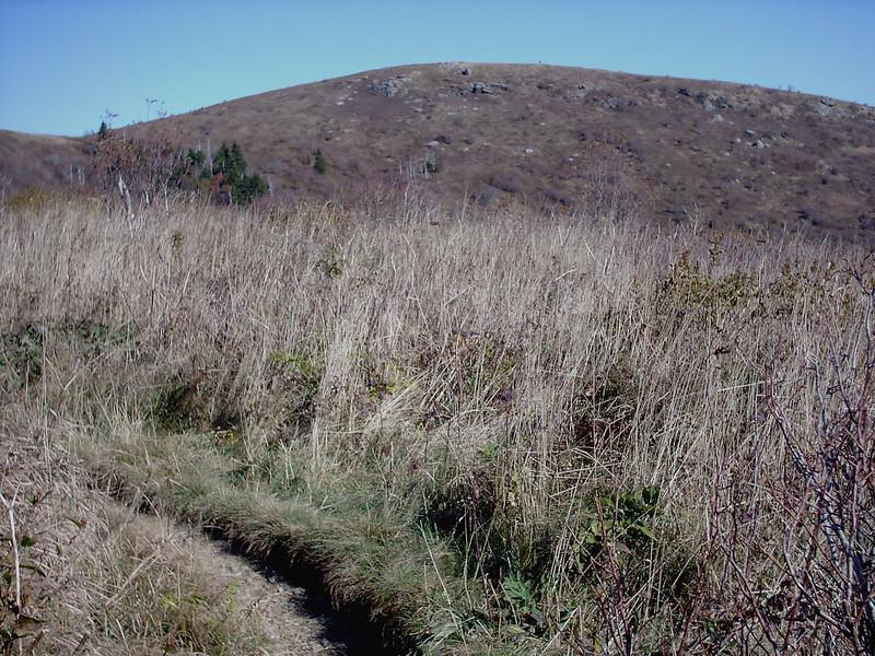 Art Loeb Trail