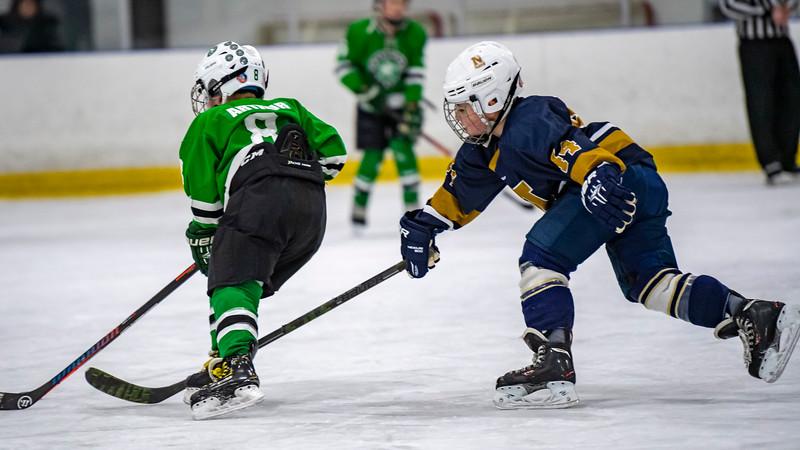 2019-02-03-Ryan-Naughton-Hockey-48.jpg