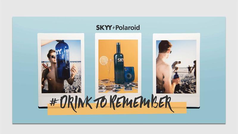 SKYY Presentation_Page_07.jpg