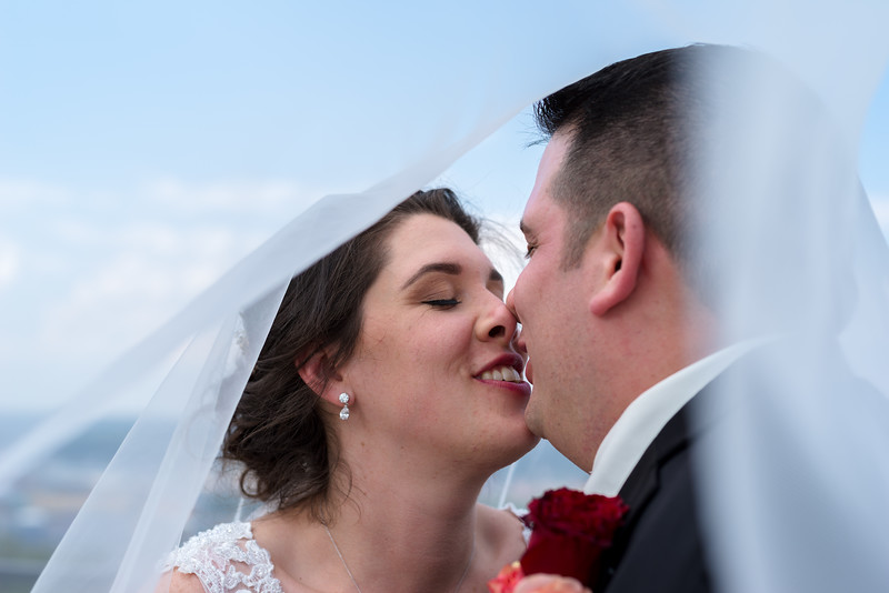 1003-Trybus-Wedding.jpg