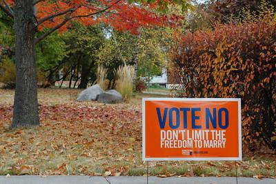 """2012 10 14: Vote No, Fall Color, """"Blue"""""""