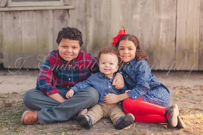 Blake Family 2017
