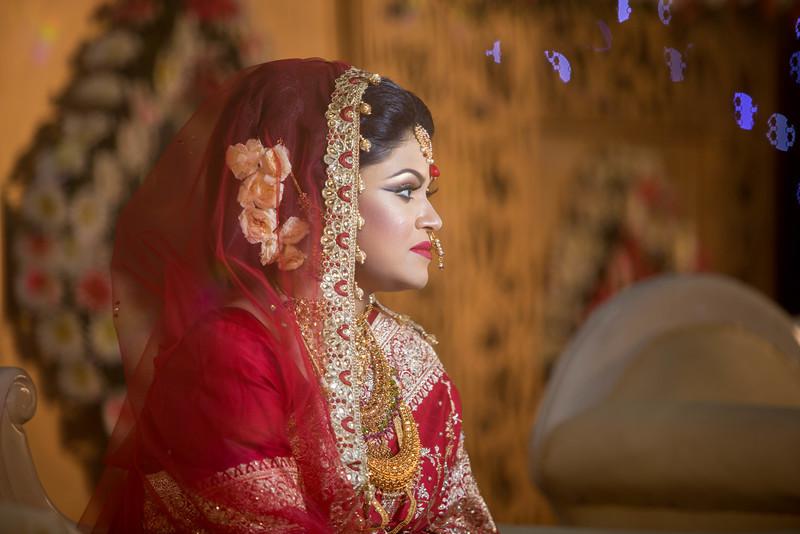Nakib-00117-Wedding-2015-SnapShot.JPG