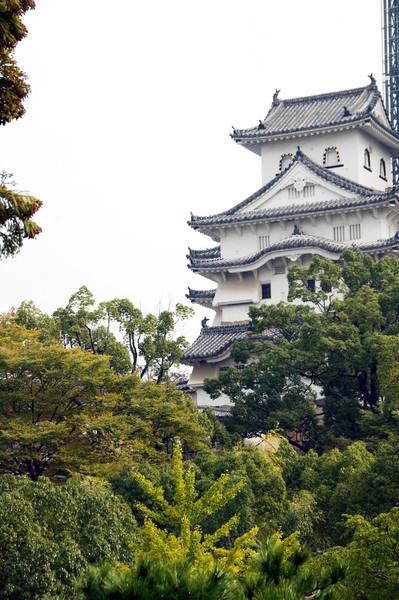 Japan_2010_NAT0971.jpg