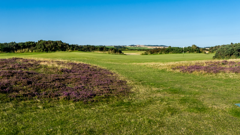 St Andrews New Course-19.jpg