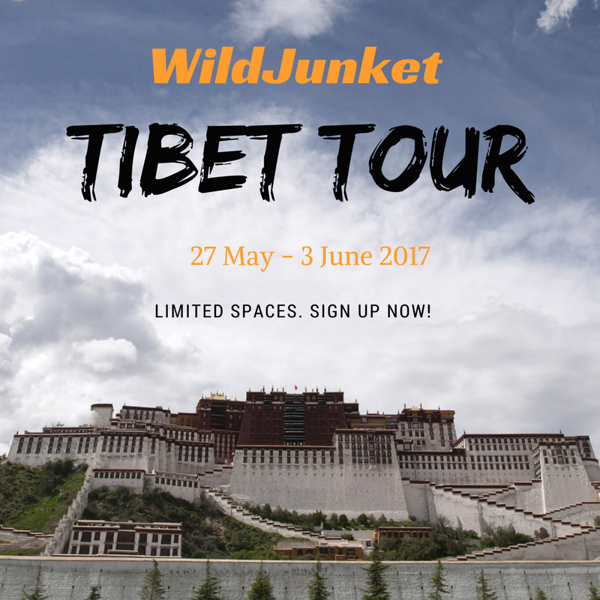 tibet tour - wildjunket