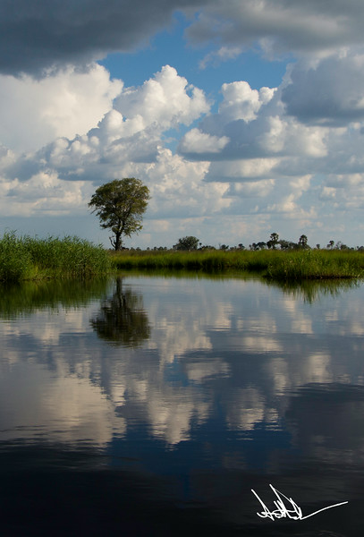 Botswana LandscapeS-6.jpg