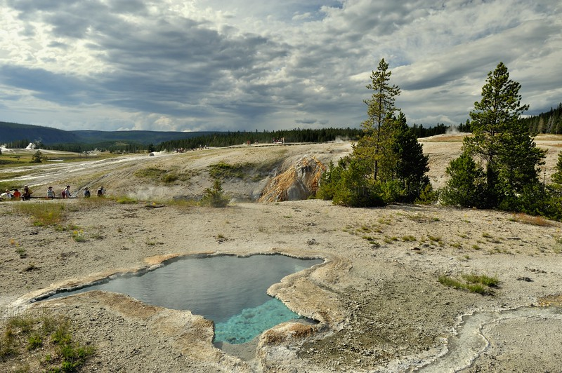 Hot spring in Yellowstone national park