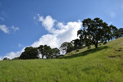 Exploring Joaquin Ridge