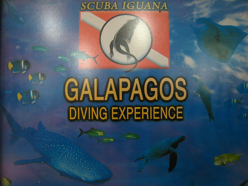 Diving in the Galapagos (84 of 392)
