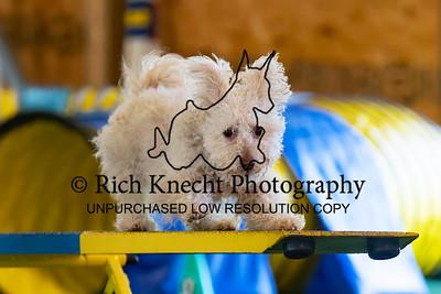 Wilmington Kennel Club AKC Agility Trial Mat 14-16