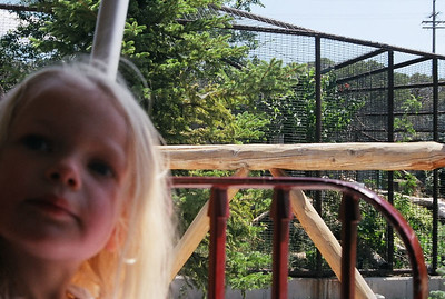 Hogle Zoo - August 2004