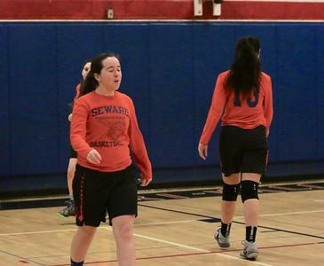 Tri-Valley vs. S.S. Seward Girls Basketball 1-28-19